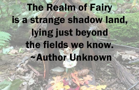 The Magic of a Fairy